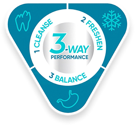 3-way-performance-badge.png